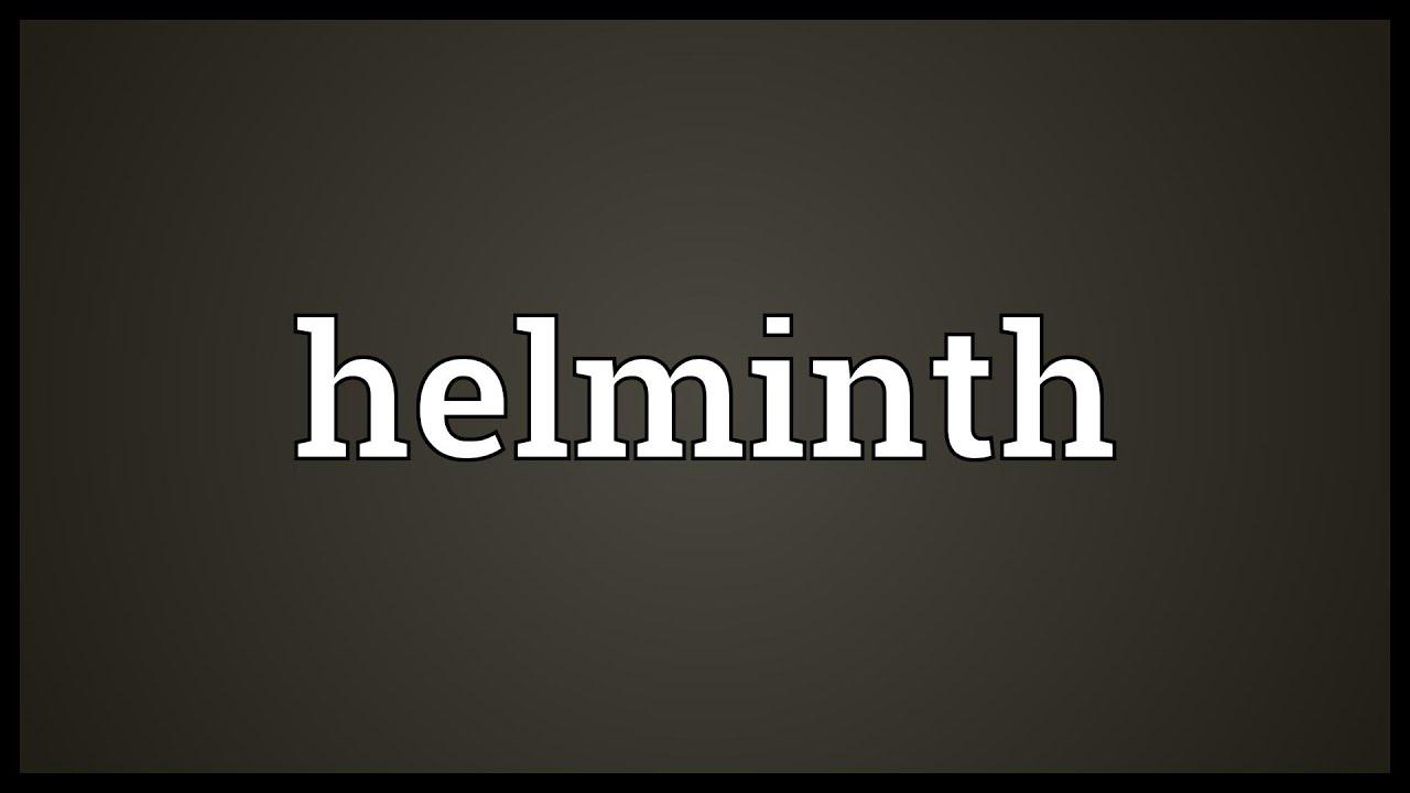 HELMINTH - Definiția și sinonimele helminth în dicționarul Engleză Meaning of helminth
