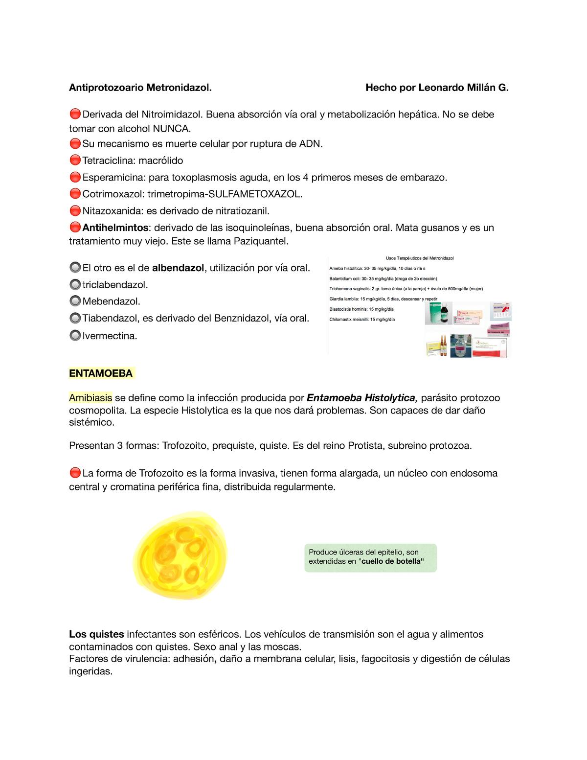 Oxiuros descripcion - pcmaster.ro