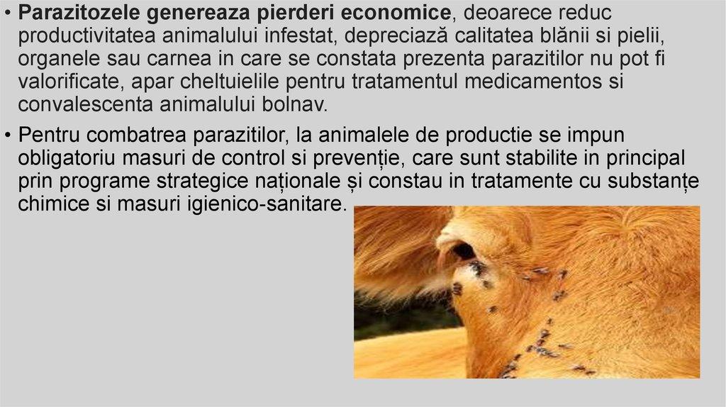 împotriva decontaminării solului papilloma of lip icd 10