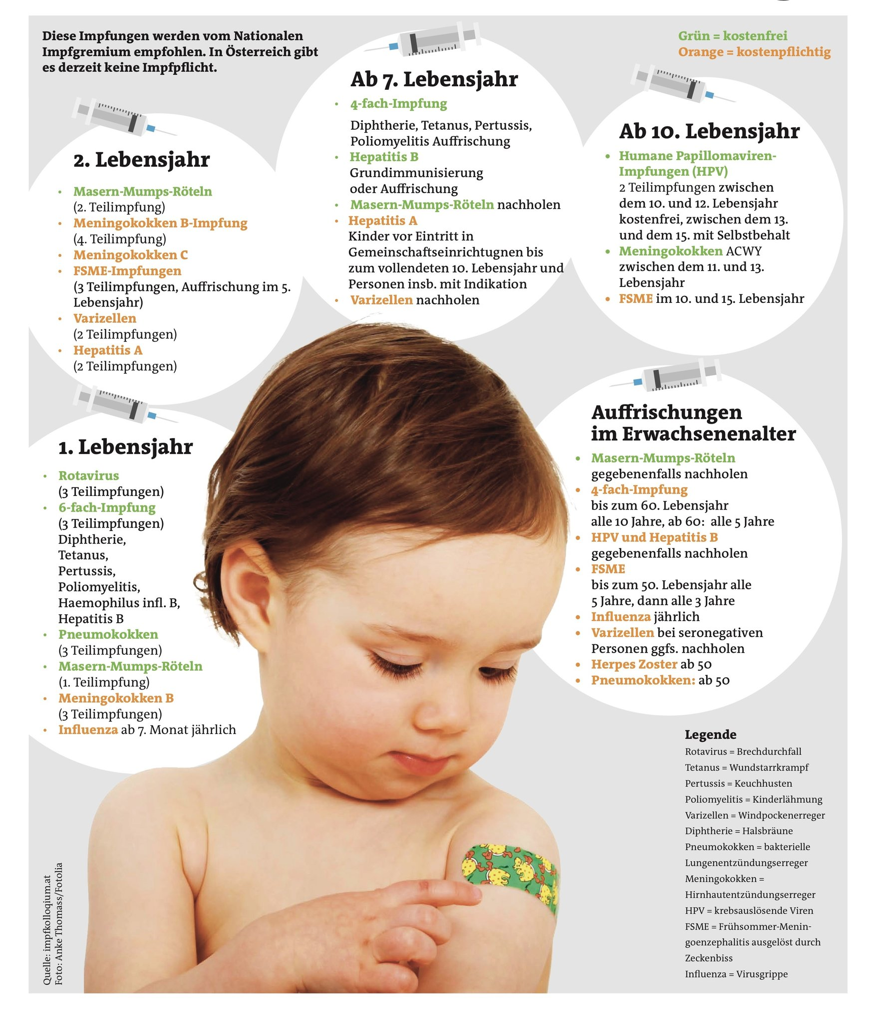 hpv impfung jungen merkblatt