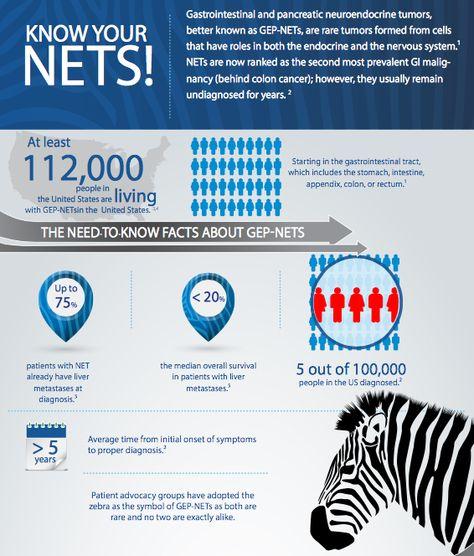 neuroendocrine cancer charity
