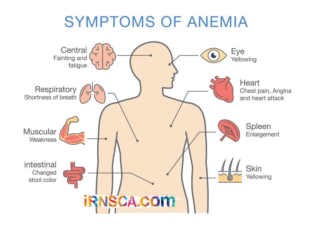 anemia weight loss evitarea răspunsului imunitar prin paraziți