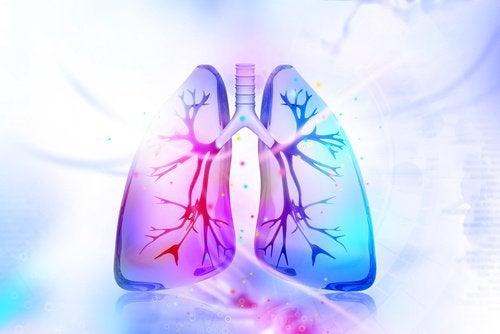 10 alimente care elimină nicotina din organism