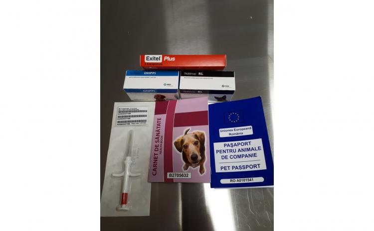 Servicii sanitar veterinare - Cabinet veterinar Buzau