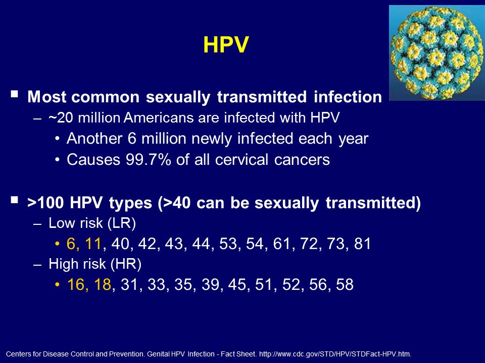 HPV detecție tipuri cu risc crescut + genotipare extinsă - Synevo