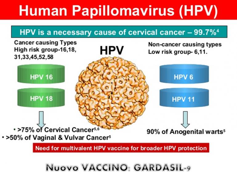 vaccino papilloma virus uomo nome commerciale