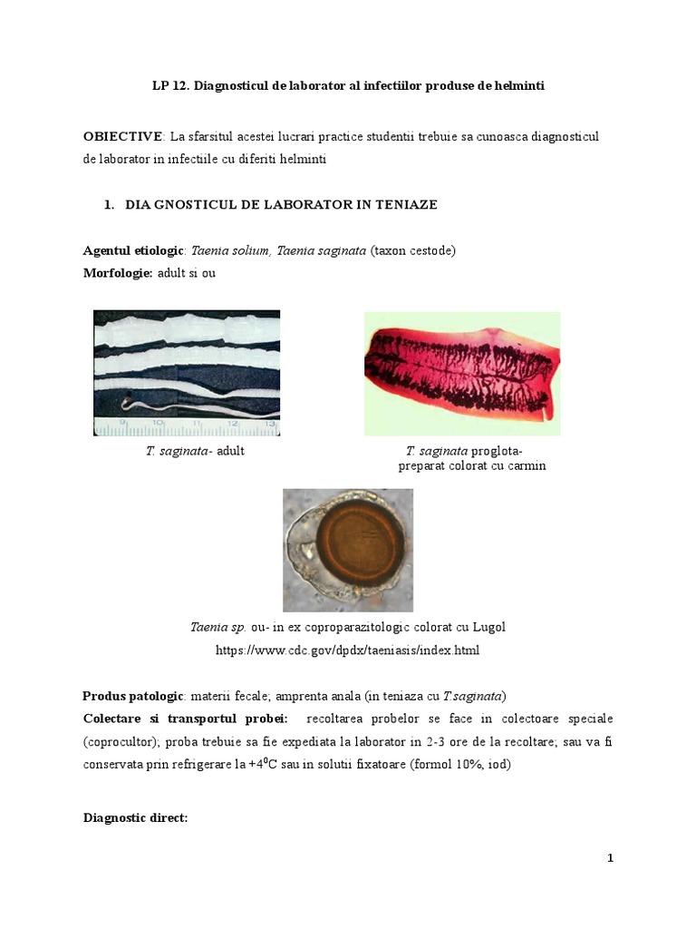 Fascioliaza este o infecție umană. Porifera, cnidaria și platyhelminthes