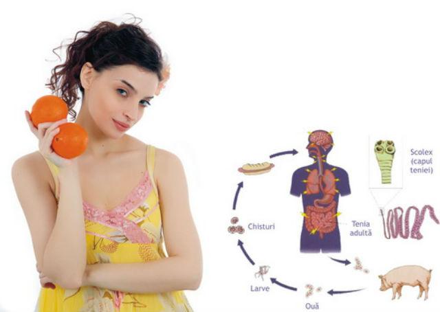 tratament natural pentru paraziti retete mancare regim hepatic