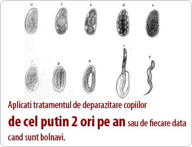 Viermisori la Copii-3 Tratamente Naturiste pcmaster.ro