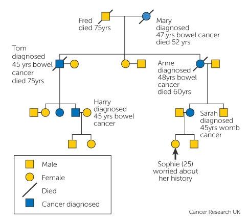 Familial cancer explained Giardia ag scaun