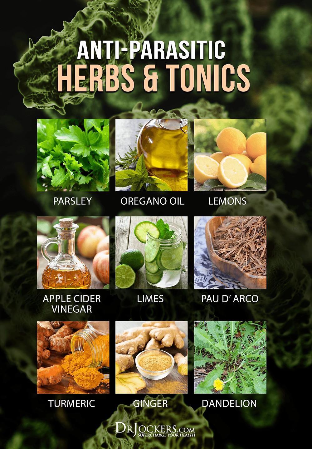 Plante, condimente si alimente care te scapa de parazitii interni