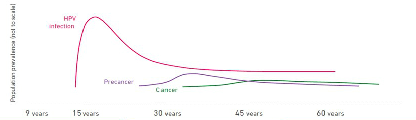 cancer causing hpv types vaccin hpv homme remboursement