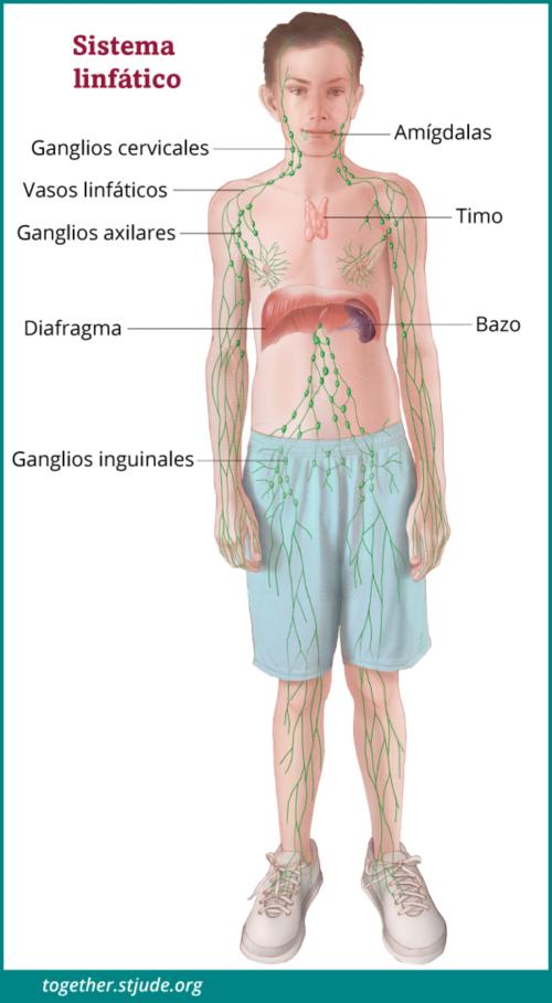colorectal cancer nccn