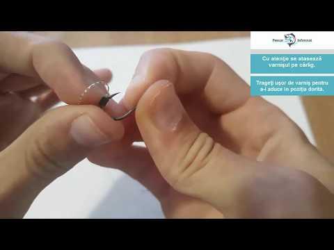 cum sunt afectate de viermii roților