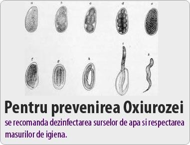 tratament oxiuroza unguente pentru condiloame