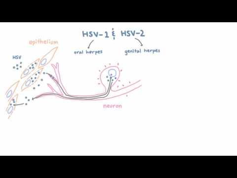 măsuri preventive împotriva nematodelor umane