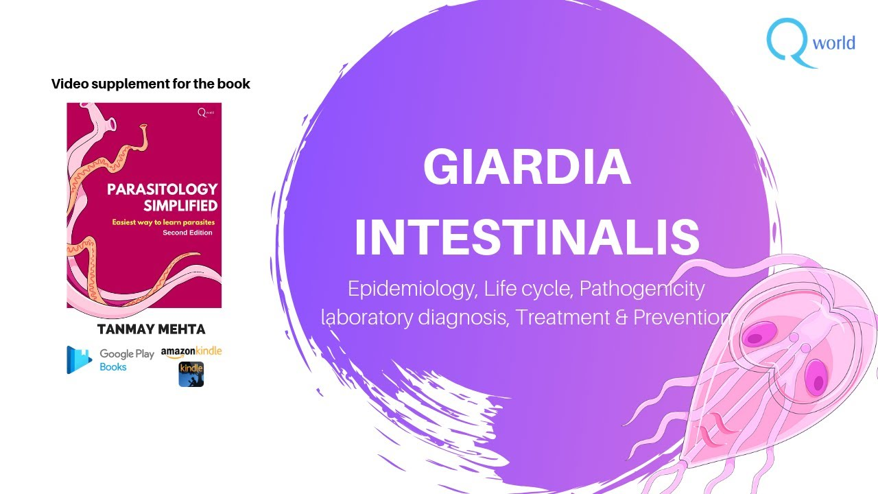 Transplant de Microbiotica Fecala (FMT) - Tratament Cu Celule Stem