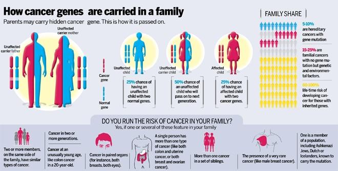 Cancerul ereditar de sân și ovar (HBOC) și testarea mutațiilor în genele BRCA1 și BRCA2 - Synevo