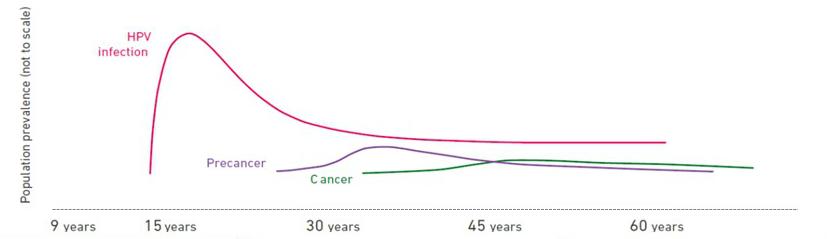 high risk hpv cancer odds tratamentul papilomavirusului uman la femei