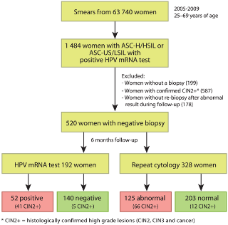 Human papillomavirus oncogenes, Paraziti cu piper