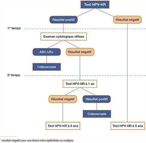 hpv hr negatif human papillomavirus kezelese