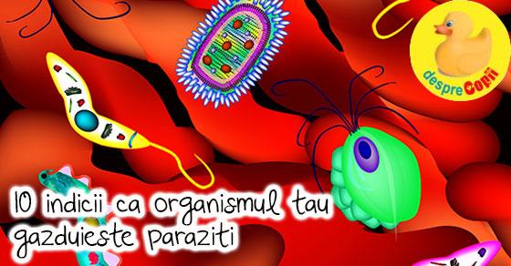 oocite și paraziți detoxifiere rapidă a intestinului