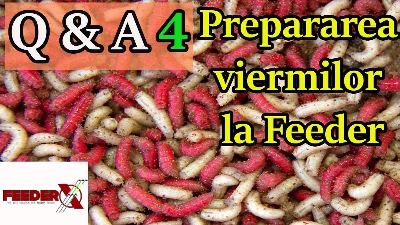 Preparate pentru viermi pentru prevenirea oamenilor. Posts navigation