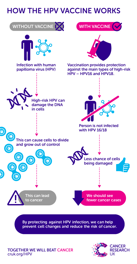 Reason for hpv infection - Înțelesul