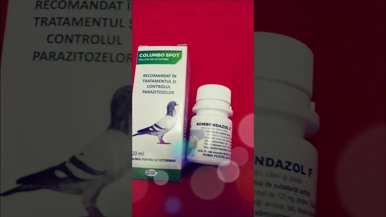 tratamentul antihelmintic al oamenilor moxibustia consecințelor verucilor genitale