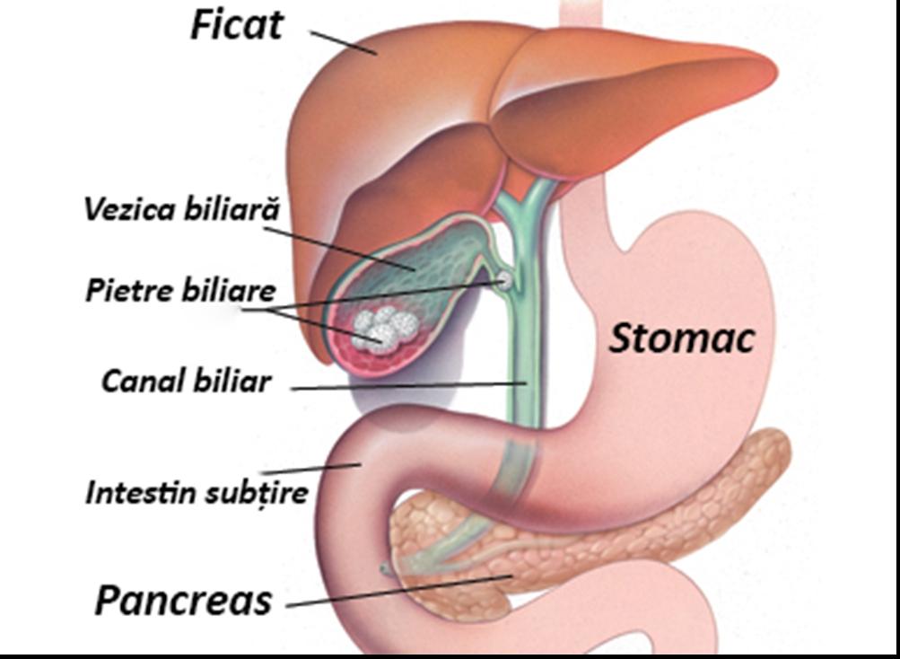 cancerul biliar simptome hpv and treatment