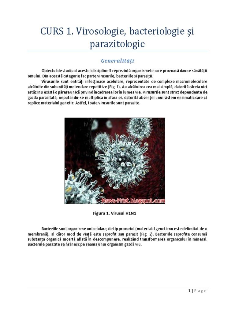 virusuri bacteriene ciuperci și imagini parazite