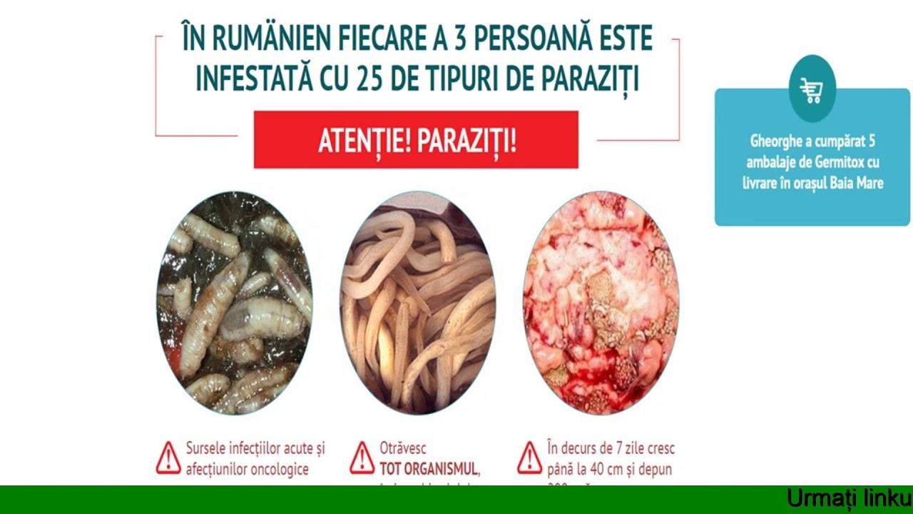 Tratamentul viermilor nematode umane, Ce tratează viermii și viermii