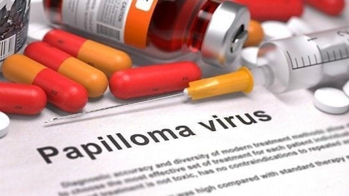 Papilloma virus traduzione inglese, Traduzioni di papilom da Romeno a Inglese - MyMemory