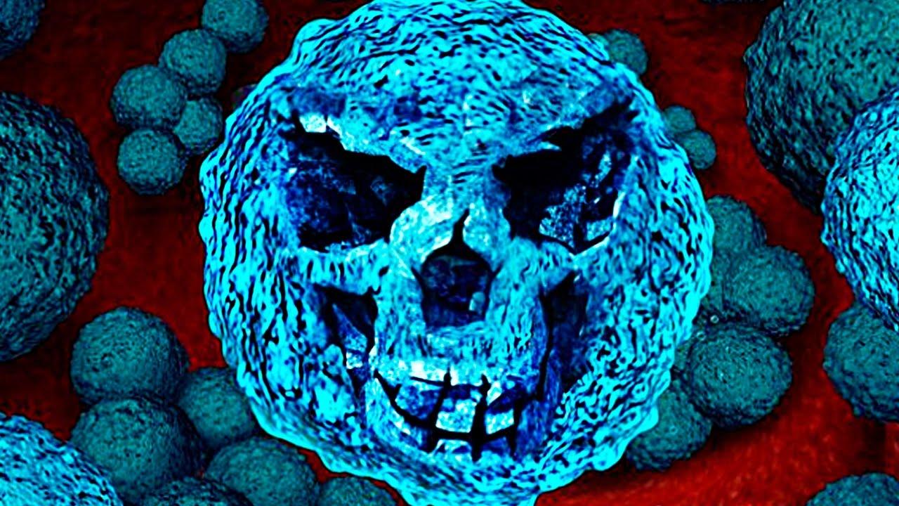 bacterii v urinata