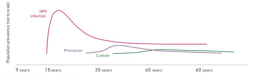 hpv virus and cancer