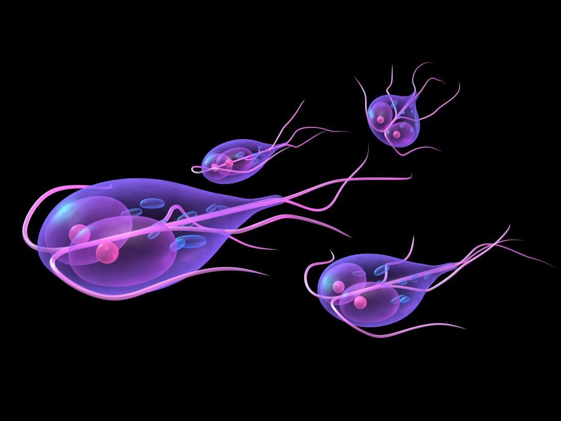verucile pot fi lăsate netratate peritoneal cancer vertaal