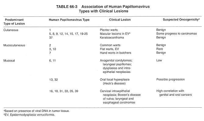 hpv type causes genital warts